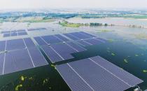 Trina Yingli SunPower顶级太阳能记分卡